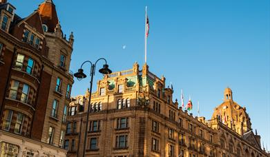 Harrods Marketing Campaign Consumer Survey