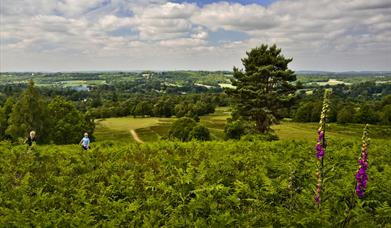 Tourism in the High Weald Area of Outstanding Natural Beauty is a central part of its Management Plan.