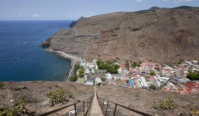 Air and Cruise Visitor Surveys and Tracking in St. Helena
