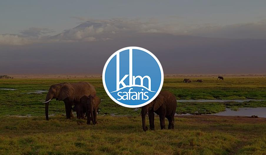 KLM Safaris